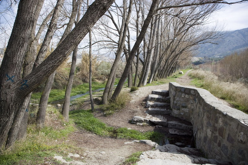 Turismo | Lugares de Interés | Fuente de la Pita | Cenes de la Vega