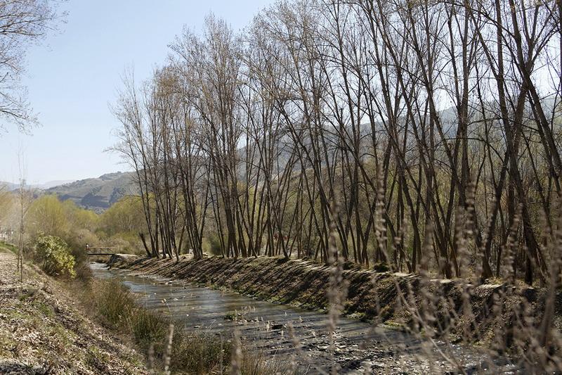 Patrimonio | Patrimonio Natural | Cenes de la Vega