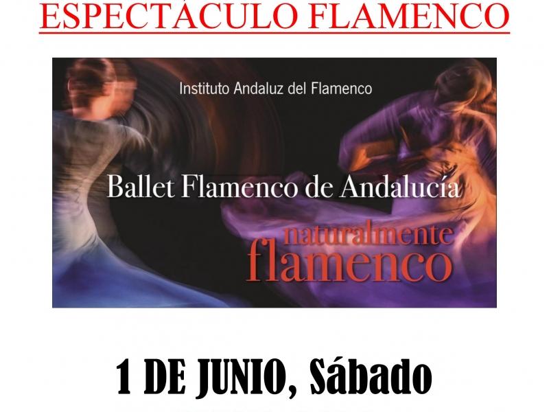 Espectáculo Teatro Alhambra