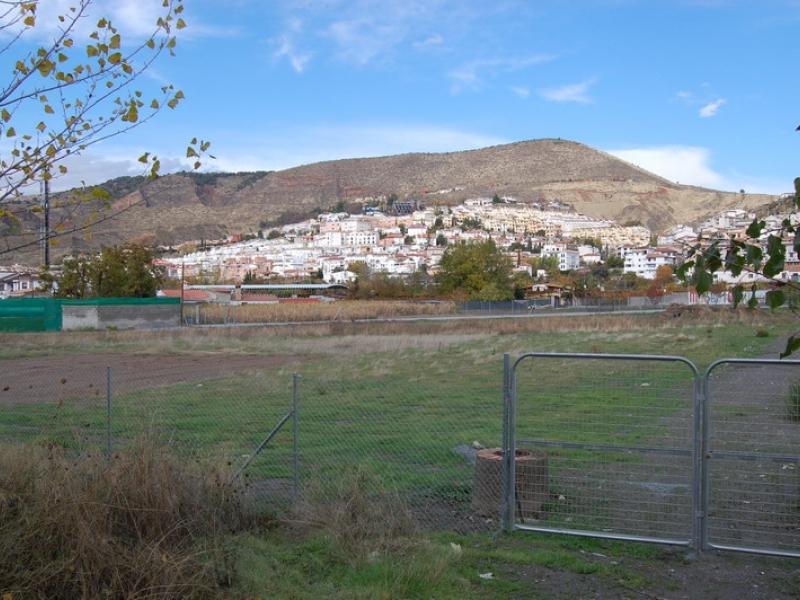 El Ayuntamiento de Cenes de la Vega oferta una treintena de huertos sociales ecológicos destinados al autoconsumo